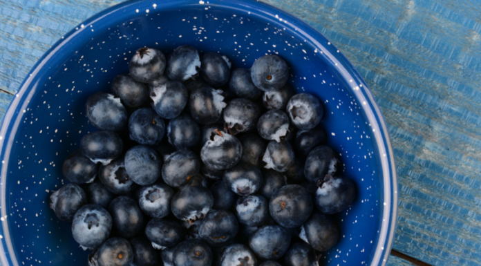 Healthy Blueberry Recipes Your Kids will Love