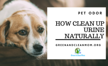 How to clean up dog urine natrually