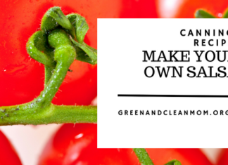 How to Can and Make Your Own Salsa Recipe