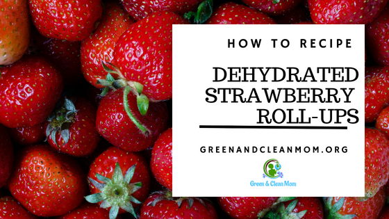 Dehydrated Strawberry Fruit Roll Up Recipe