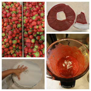 Homemade Strawberry Fruit Rolls Ups
