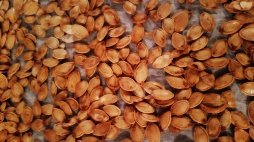 Roasting pumpkin seed that are delicious! #fall #pumpkin #recipes #autumn