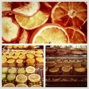 How to Dehydrate Fruit in the Oven #DIY