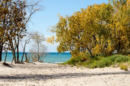 Michigan Sand Dunes #Camping # Michigan #PureMichigan