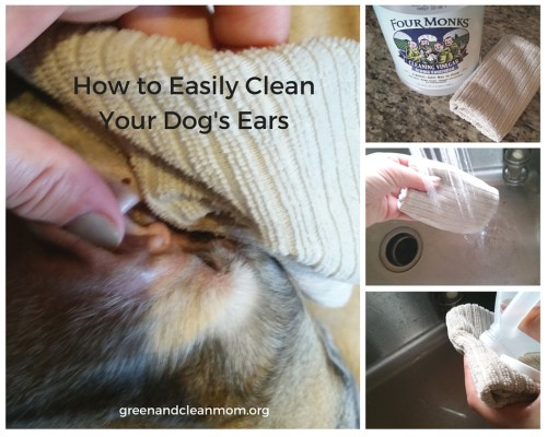 How to Clean Your Dog's Ears Naturally with Four Monks Vinegar