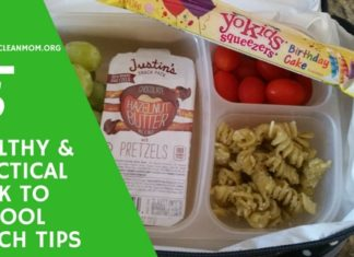 5 Tips for Packing a Healthy Back to School Lunch Your Kids WILL EAT