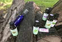 Essential oil recipes to keep away bugs