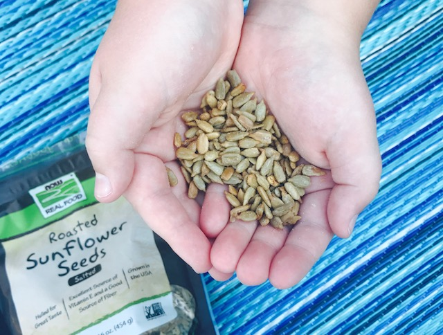 The many uses and benefits of sunflower seeds!