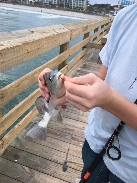 Fishing on Second Avenue Pier – A Vacation with Teens to Myrtle Beach