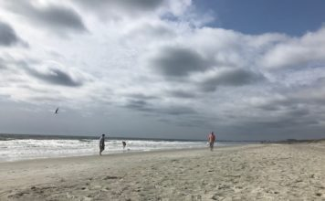 Huntington State Park in South Carolina for Sea Shell Hunting