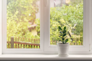 3 Eco-Friendly Home Projects to Consider This Year